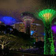 シンガポール,マリーナベイサンズ,ガーデンズ・バイ・ザ・ベイ,ガーデンラプソディ,スーパーツリーグローブ,イルミネーション